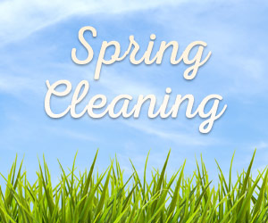 Spring Cleaning for the Cleaning Challenged